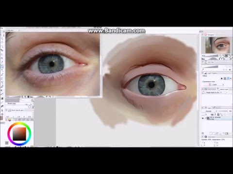 Realistic Eye Speed Painting | Emily Blanchard