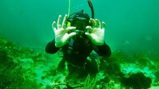 Ocean Treasure 👑 Hunter finds Pandora Bracelet & gold rings 💍