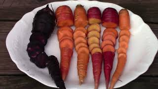 Ranking 6 Different Carrots By Taste and Overall Performance