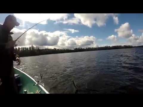 Air Ivanhoe - Wilderness Lake