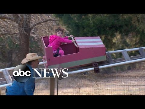 Grandpa builds backyard roller coaster for granddaughter