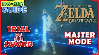 BotW: Trial of the Sword Master Mode No Damage