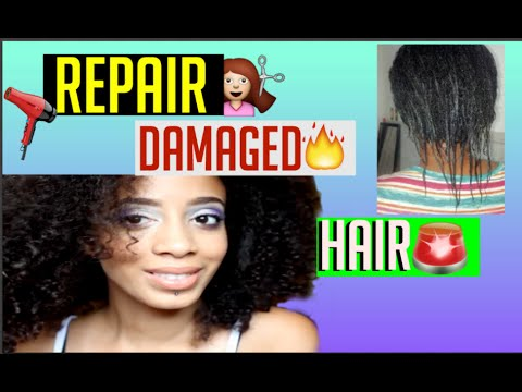 Repair VERY damaged hair!