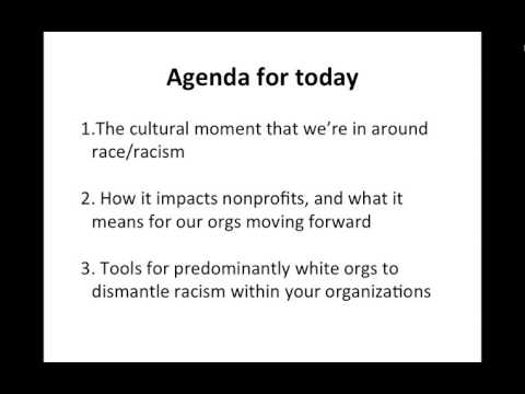 Diversity Series  Dismantling Racism Within Nonprofit Organizations