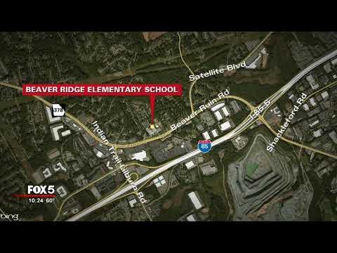 Elementary school student brings gun to school