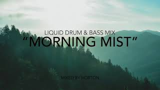 """Morning Mist"" ~ Liquid Drum & Bass Mix"