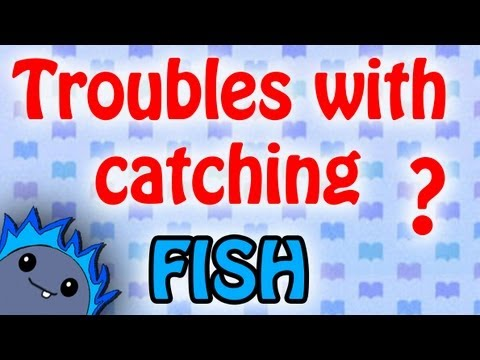 FISH GUIDE -  Animal Crossing: New Leaf