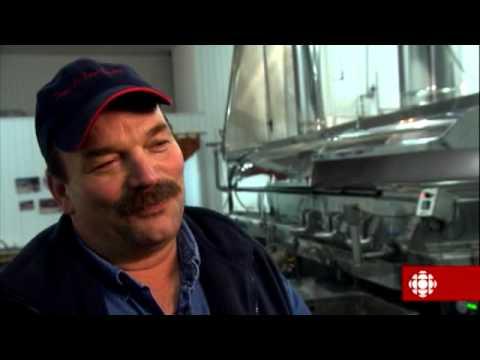 L'épicerie - Pourquoi le sirop d'érable est-il si cher?