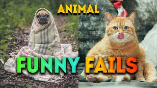Funny Animal Fails / Best Of The 2020 Fail Compilation