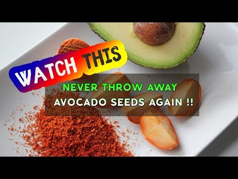 Here's Why You Shouldn't Throw Away Avocado Seeds