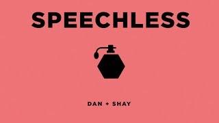 Dan  Shay  Speechless Icon Video