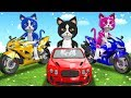 Funny Cats On Power Wheels Unboxing Toys Surprise For Kids Three Little Kittens Nursery Rhymes