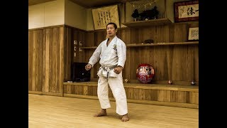 Why so many all Japan selected Karate atheletes have appeared from Shoto Federation?
