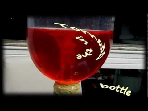 Tornado in the bottle (Kids cool science)