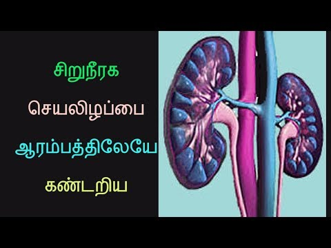 Symptoms of kidney failure- health tips in tamil