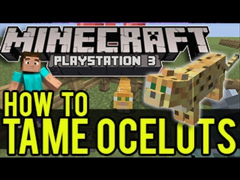Minecraft Playstation / Wii U - How To Tame an Ocelot