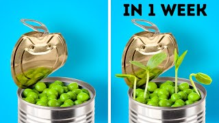 27 PLANT AND GARDEN HACKS || Easy Ways To Grow Seeds And DIY Backyard Upgrades
