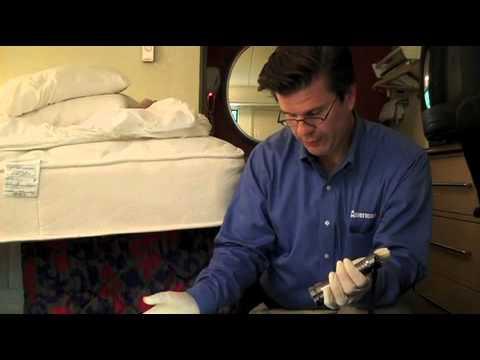 Hotel Room Bed Bug Inspection