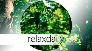 Calm Relaxing Music - think, meditate, enjoy - N°038 (4K)