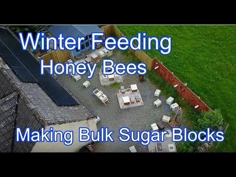 Making Sugar Blocks / Sugar Cakes In Bulk For HoneyBees Using A Cement Mixer