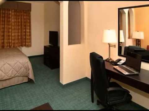 Comfort Inn & Suites st petersburg
