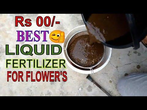 Compost Tea - Organic Fertilizer//How to make tea fertilizer liquid//tr roy //26 jan 2018