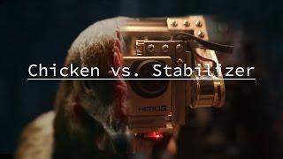 Chicken vs. Stabilizer