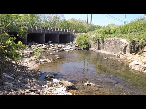 City Creek Treasure Hunt: Outer Banks Leg Three