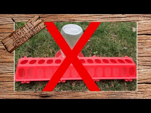 Reduce or Eliminate Quail Feed Waste: The SR Quail Update 10-31-16
