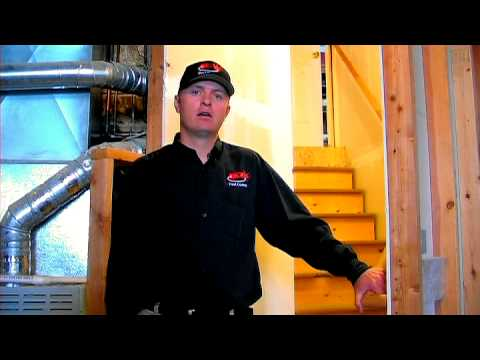 Termite Control : How to Get Rid of Termites