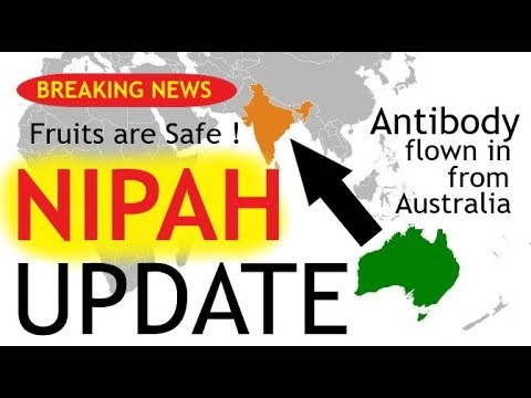 Breaking News : Antibodies For NIPAH virus | Fruits are Safe | Explained in ENG by  Dr.Education