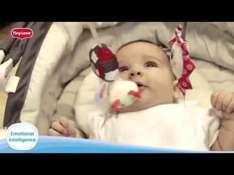 Baby's Development: Emotional Intelligence (EQ)