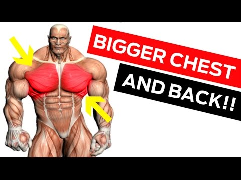 Chest & Back Workout for Mass: 6 Must-Do Chest Exercises & Back Exercises