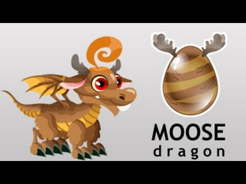 How To Breed Moose Dragon In Dragon   Get Moose Dragon By Breeding