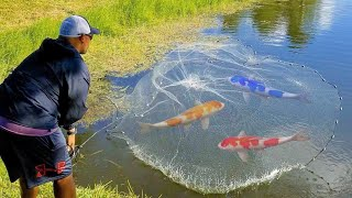 Using GIANT NET-TRAP to CAPTURE COLORFUL FISH for FEEDING!