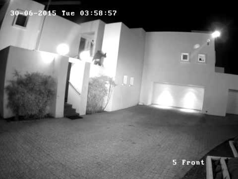Attempted break-in and subsequent armed response
