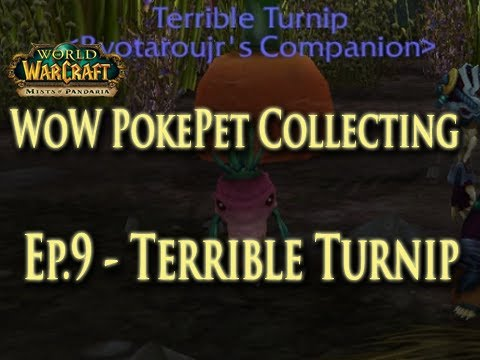 EP.9 Wow Pet/Battle Pet Collecting - How to Get the Terrible Turnip Pet