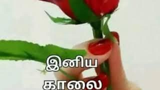 Good Morning Tamil Song 86 Music Jinni
