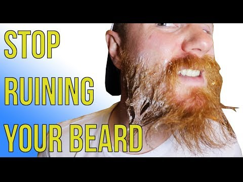 Beard Shampoo vs Hair Shampoo | Differences, Benefits and Important Information