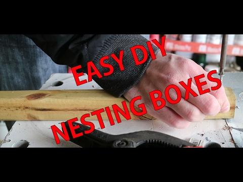 DIY EASY CHICKEN NESTING BOXES