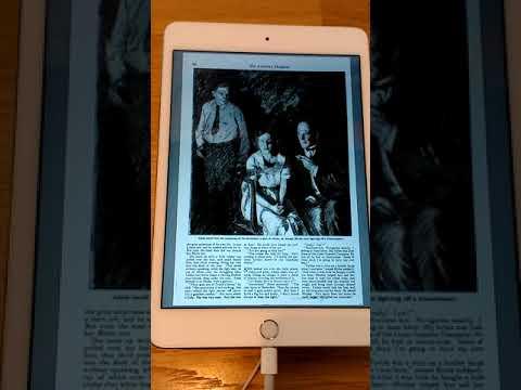 iPad Mini 4 iOS 11 Google Books PDF Test 2