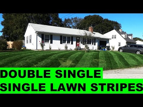 Lawn Striping Kentucky Bluegrass - Double Single Single Stripes at 2.5in