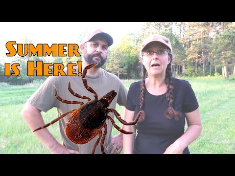 Protect Yo Self....From Ticks and Chiggers!