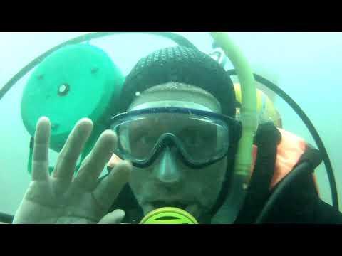 Brownsea Island underwater video July - September 2017