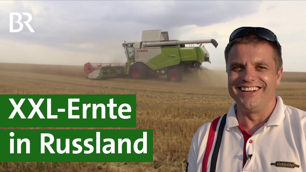 Ernten auf russischen Riesenfeldern | Unser Land | BR Fernsehen