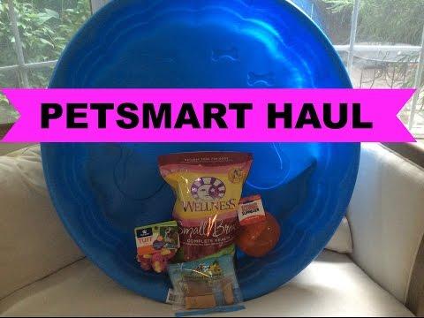 Petsmart Haul