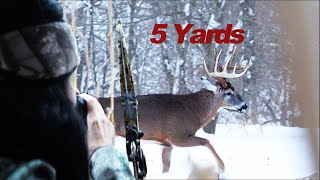 Deer Hunter, Archery , 10 Big Bucks. How Many Get Slocked?