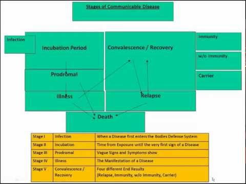 Health: Communicable Diseases