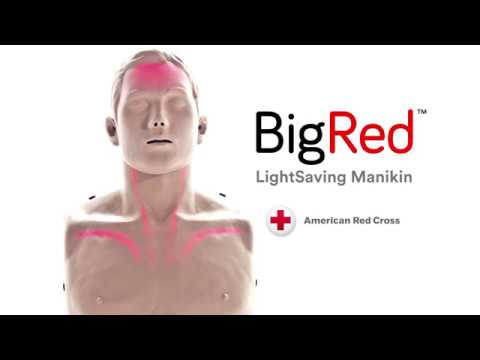 The BigRed CPR Manikins for Instructors