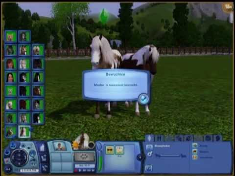 How to breed with MORE THEN 6 PETS on sims 3?